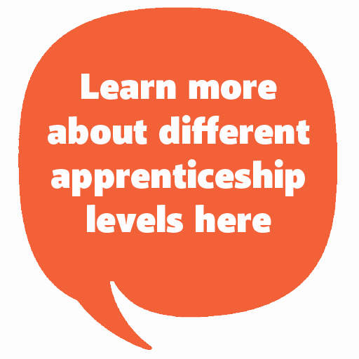 Learn more about different apprentiship levels